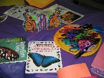 "Photo from the ""Butterflies are Free"" activity in the Rain forest WONDERlab"